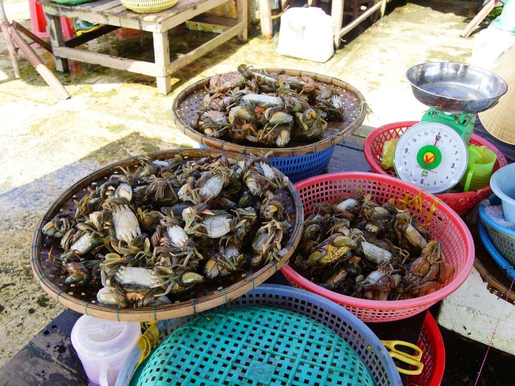 Mercados de Hoi An no Vietname